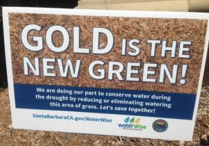 Conserve Water - Gold is the New Green,